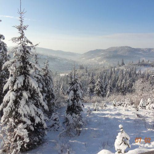 Зимние окресности  - фото 1